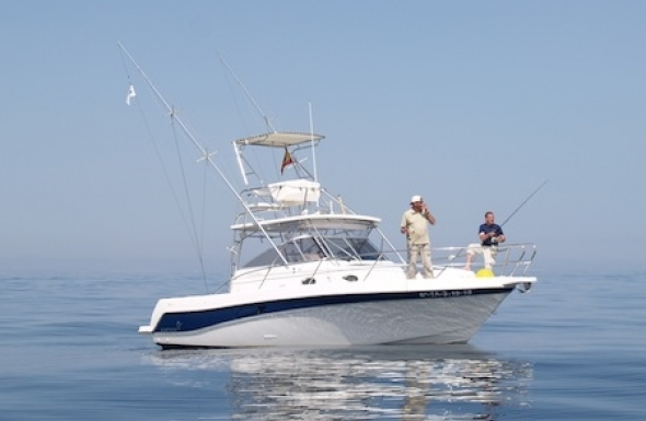 Fishing holidays in spain fishing charter booking for Boat fishing games